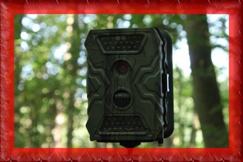 Wildkamera Acorn X Cam